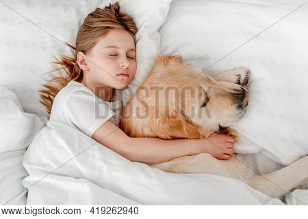 Beautiful little girl staying in the bed with golden retriever dog in the morning time and napping. Kid sleeping with pet at home. Portrait of friendship between human child and animal