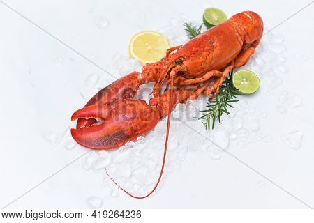Red Lobster Dinner Seafood With Herb Spices Lemon Rosemary On Ice In The Restaurant Gourmet Food Hea