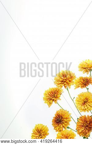 Flowers Composition From Chrysanthemum Flowers. Yellow Flowers On White Background. Flat Lay, Top Vi