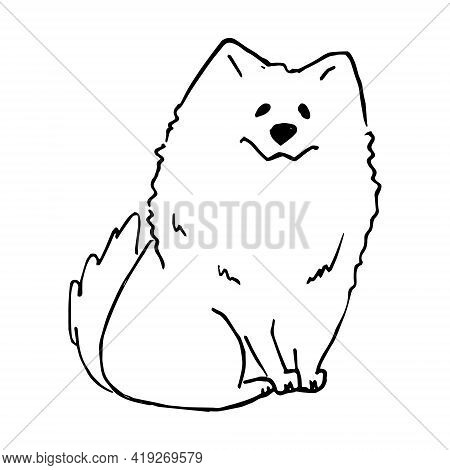 White Cute Smiling Samoyed Dog Hand Drawn Vector Llustration Doodle Sketch. Puppy Cartoon Character