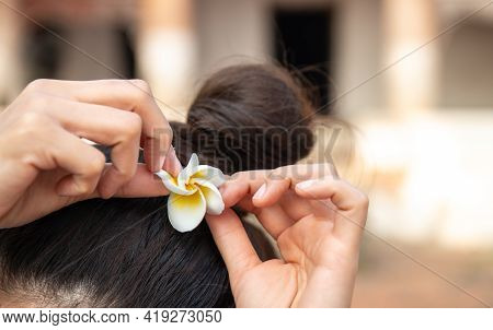 Close Up Of Asian Woman Trying To Using Plumeria Flower Leaf (dok Champa) To Ornament Her Hair. Plum