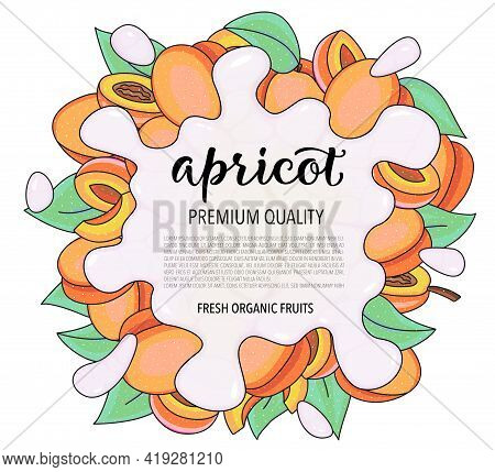 Vector Background With Apricot, Whole And Pieces - Splash Of Water Or Milk