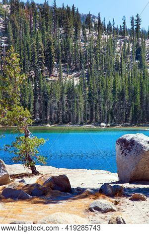Tioga Road. The stone beaches surround the lake. Dense evergreen forest at the foot of the mountains surrounds the lake. Beautiful Tenaya lake in Yosemite Park. Warm sunny autumn day