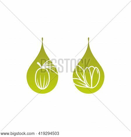 Shea Nut And Argan Nut With Oil Drop Green Icon. Vitellaria Beauty And Cosmetics Oil. Cosmetic Ingre