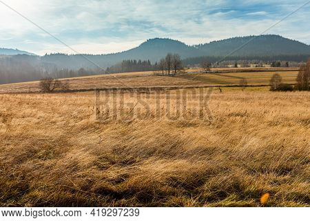 Open Air Meadow With Faded Grass In A Autumn Season With Forest And Mountains On A Horizon. Natural