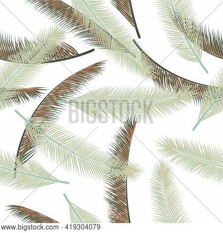 Summer Palm Tree Foliage Vector Seamless Pattern. Boho Illustration. Exotic Rainforest Palm Tree Fol