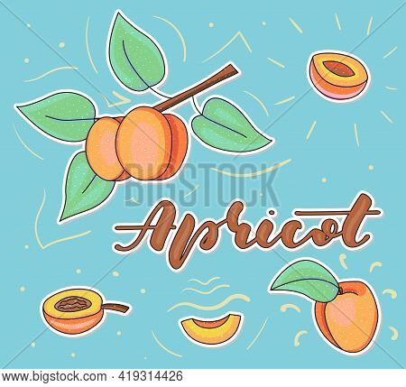 Colored Apricot Set Using Doodle Art - Whole And Pieces