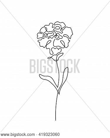 Carnation Flower Vector Illustration In Simple Minimal Continuous Outline Line Style. Nature Blossom