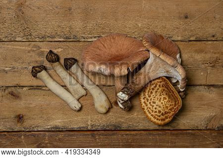 Forest Mushrooms On A Wooden Background. Edible Mushrooms. Mushrooms Of Different Types