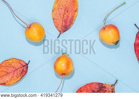 Autumn Composition. Pattern Made Of Autumn Leaves, Acorn, Pine Cones On White Background. Flat Lay,