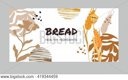 Banner Or Flyer Design With Wheat Ears And Poppy Seed Boxes At Decorative Abstract Backdrop, Flat Ve