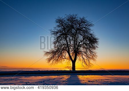 Empty Road Through Snow-covered Field After A Blizzard At Sunset. Clear Sky, Golden Light. Idyllic R