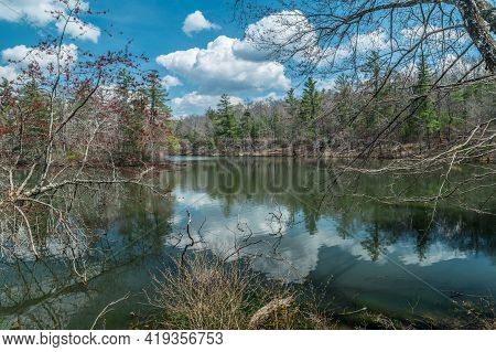 A Gorgeous Setting Of Byrd Lake In Central Tennessee In Early Spring With The Bare Trees Sprouting N