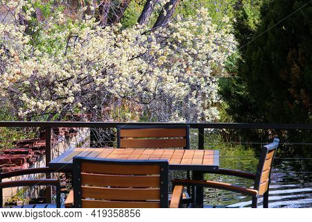 Outdoor Patio Furniture Including A Table And Chairs Besides A Pond Surrounded By Deciduous Plants A