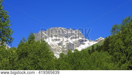 The Caucasus Mountains Peaks Under Snow And Clear Blue Sky And Green Wood Foreground Dombai Summer T