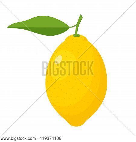 Fresh Lemon Fruits With Leaves. A Whole Lemon. Yellow Citrus Isolated On White Background. Lemon Ico