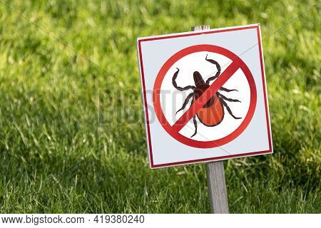 Lawn Is Protected From Insects. Insecticides. Carefully Mites. Insect Control.