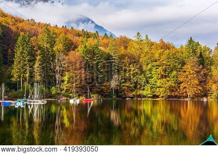Magnificent lake with clear water is surrounded by mountains and dense forests. Sailing yachts and motor boats are moored to the shore. Bohinj is an alpine lake in the Julian Alps. Slovenia