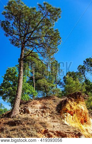 France, Provence. The village of Roussillon is surrounded by picturesque ocher cliffs. Now the rocks have grown into dense forests.