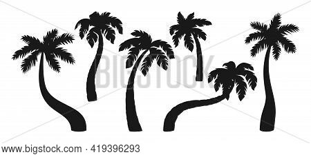Coconut Palm Tree Black Silhouette Cartoon Set. Tropical Line Palm Trees Design Element. Hand Drawn