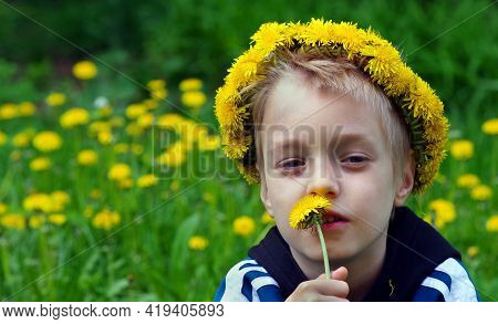 Boy In A Wreath Of Dandelions In A Blooming Meadow. Baby Sniffing Dandelion Flower. Summer Concept