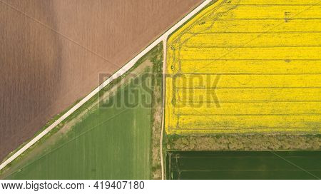 Top Down View Of Fields With Various Types Of Agriculture. Beautiful Yellow Rapeseed Fields.