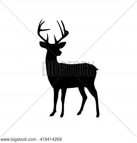 Black Vector Silhouette Of Horned Deer On White Background. Isolated.