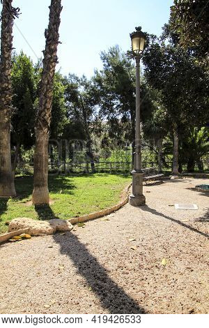 Landscape Of Palm Grove And Beautiful Gardens On The Hillside Of The Vinalopo River In Elche In Spri