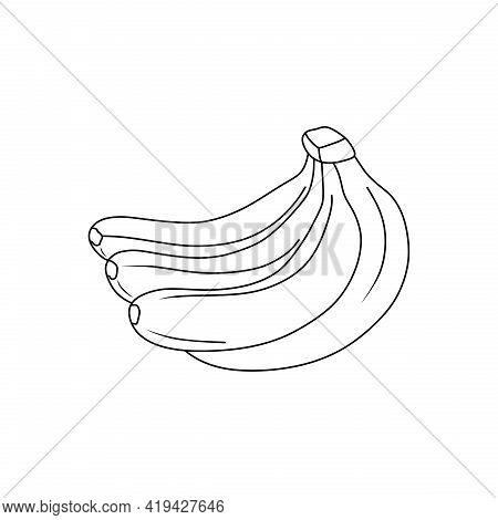 Vector Graphic Of Banana Line Icon. Banana Fruit. Banana Sketch. Suitable For Coloring Book