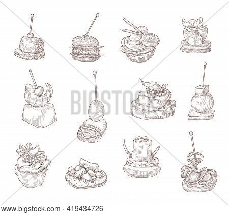 Hand Drawing Canape Elements Vector Illustration Collection. Engraving Appetizers On Sticks With Che