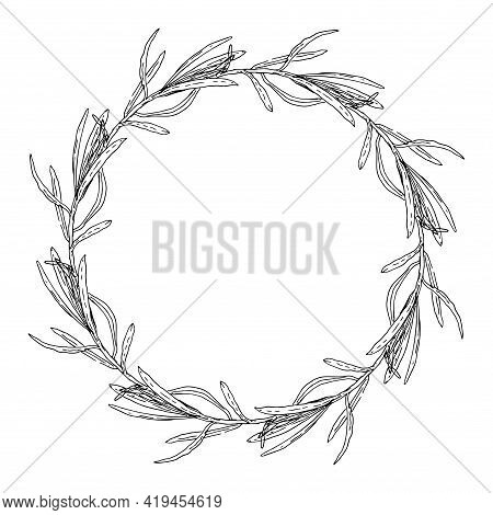 Retro Sketch Pattern With Black Tarragon Sketch Wreath On White Background. Herbal Illustration.vect