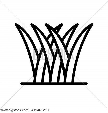 Grass Line Icon. Spring, Gazon. Simple Flat Vector Illustration For Store, Web Site Or Mobile App.