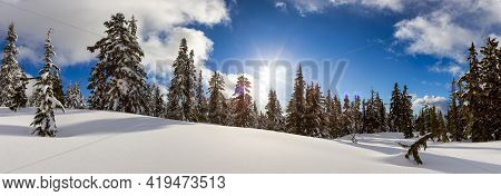 Panoramic View Of Canadian Nature Landscape On Top Of Snow Covered Mountain And Green Trees In Sprin