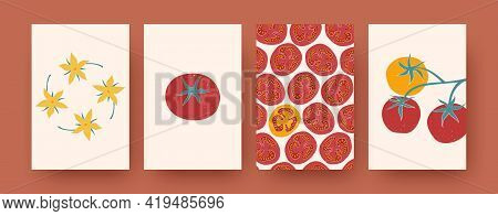 Set Of Creative Tomato, Vegetable Vector Illustrations. Collection Of Contemporary Natural Elements