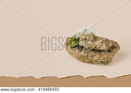 Minimalistic Mock-up Of A Stone Podium And A Sprig Of Cherry Blossoms On A Beige Background With Cop