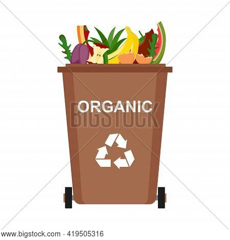 Garbage Bin With Organic Waste, Recycling Garbage, Vector Illustration