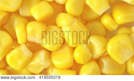 Maize Corn Texture Useful As A Background