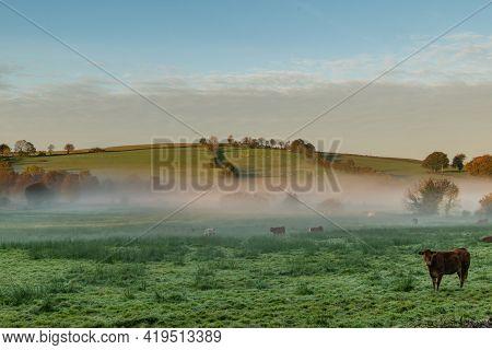 Foggy Sunrise Over The Farmland In The Midlands Of Ireland.