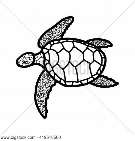 A Hand-drawn Turtle. Vector Icon, Doodle Illustration. Drawing In A Flat Style. Coloring Book On The