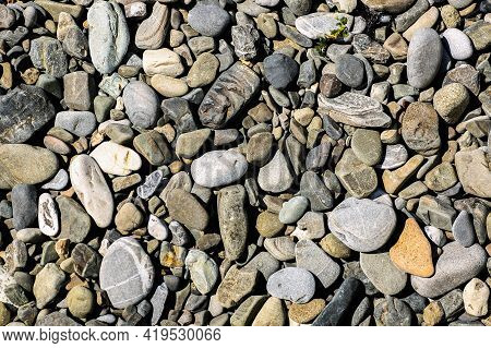 Stone Pebble Background, Outdoor Natural River White Gray Stone Pebbles Small Size, Abstract Dry Gar