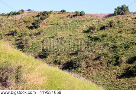 Lush Green Badlands Covered With Grasslands And Mustard Plant Wildflowers During Spring Taken On Rur