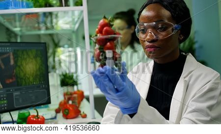 African Researcher Holding Glas With Strawberry Injected With Pesticides