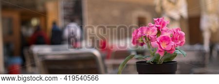 Street restaurant Flower in table of street cafe in European city