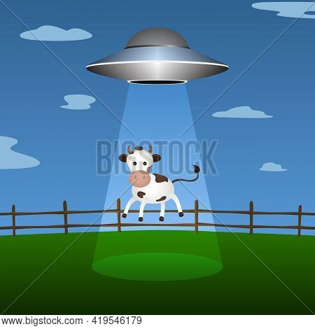 Flying Saucer Abducts Cow From Corral. Vector Illustration.