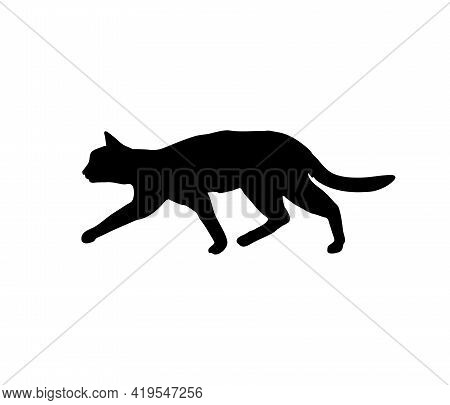 Crouching Cat Silhouette. Sneak Up On The Target. Predator On The Hunt