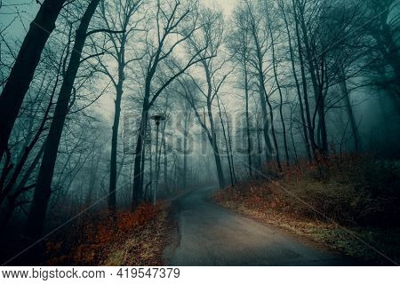Autumn gloomy forest on foggy morning an road. Gloomy misty country road in autumn forest.