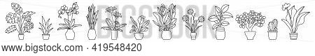 Indoor Plant In A Pot. Black And White Sketch Collecton. Vector Doodle Line Illustration Set. Monste