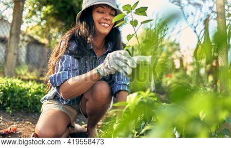 Owner Female Gardener Gardening In The Garden To Growing New Plants. A Young Woman Has A Joyful Expr