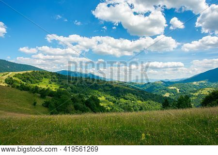 Carpathian Rural Landscape In Mountains. Grass And Herbs On The Meadow, Trees On The Hills Rolling D