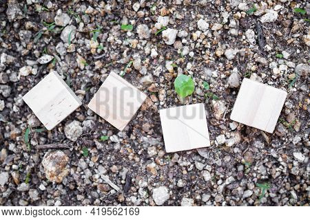 Flat Lay Square Wooden On Soil For Add Text Happy New Year 2022. Saving  Protect, Environment, Arbor